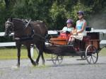 Cart Driving